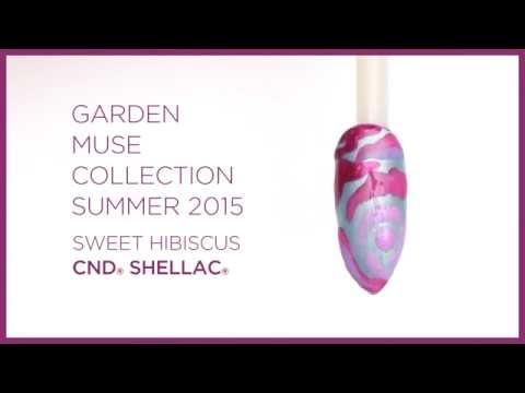 Garden Muse - Shellac Sweet Hibiscus Design